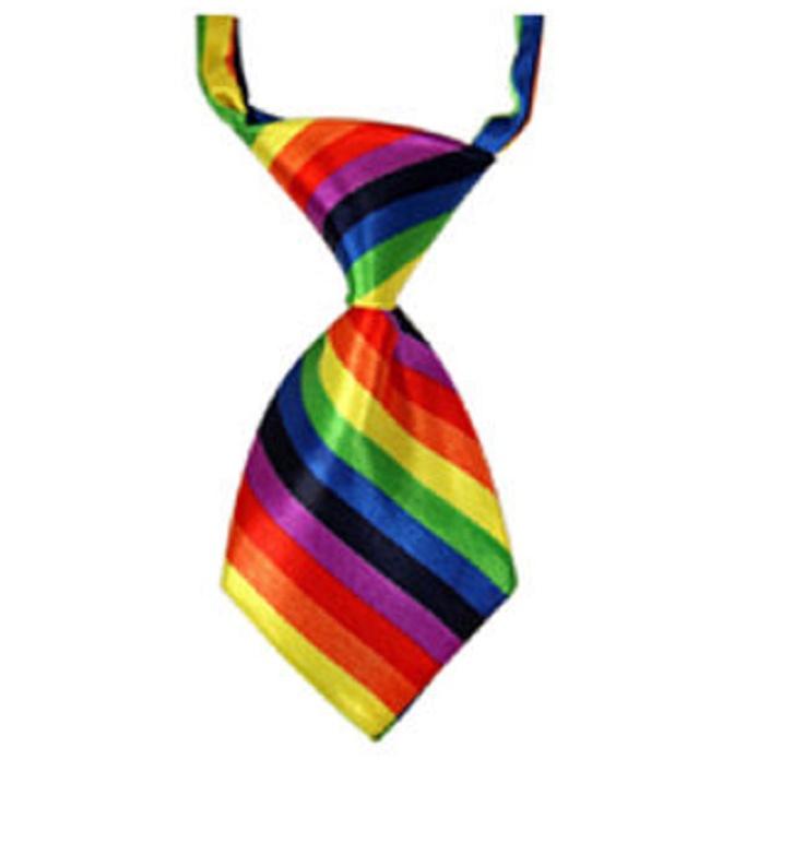 Многоцветна мини вратовръзка